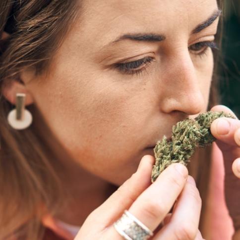 woman-holding-cannabis